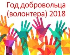 Год добровольца(волонтера) в России 2018